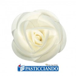 Rose giganti Ambra's in vendita online
