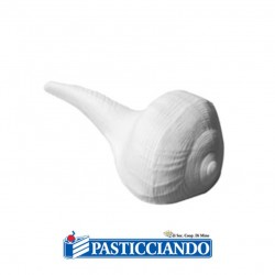 Selling on-line of Conchiglia in zucchero 4