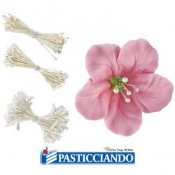 Vendita on-line di Pistilli bianchi per fiori Wilton