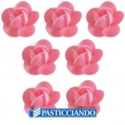 Rose in ostia 7pz rosa Floreal in vendita online