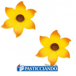 Selling on-line of Girasoli in zucchero
