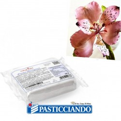 Selling on-line of Pasta bouquet Saracino