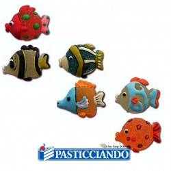 Selling on-line of Pesce in zucchero e gelatina