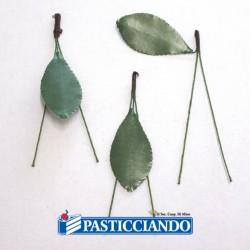 Selling on-line of Steli ciliegie per martorana 100pz